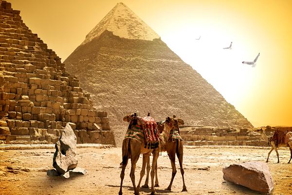 吉薩金字塔、騎駱駝