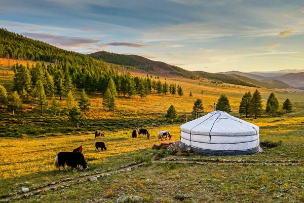 豪華蒙古包渡假村